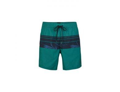 O'neill PM Cali Stripe Shorts Βερμούδα Εισ. 6950 Green AOP